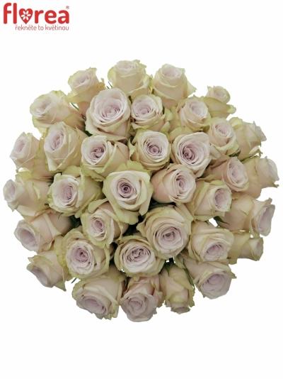 Kytice 35 světle fialových růží SILVERY FLAME 35cm