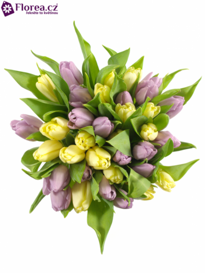 Kytice 35 tulipánů IRENA 35cm