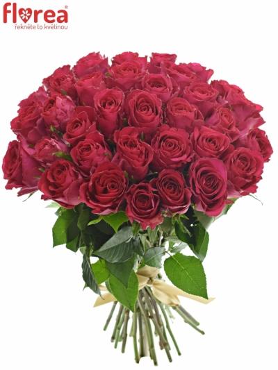 Kytice 35 vínových růží MADAM CERICE 40cm