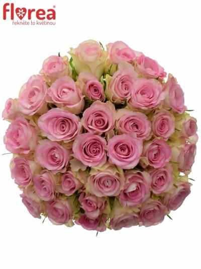 Kytice 35 žíhaných růží LOVELY JEWEL 50cm