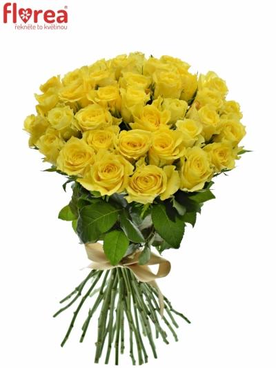 Kytice 35 žlutých růží GOLDEN TOWER 60 cm