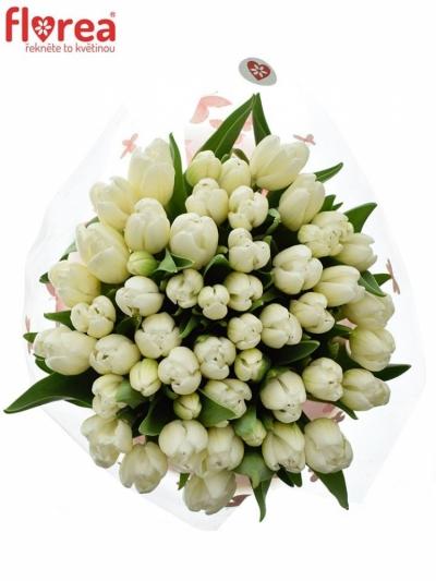 Kytice 50 bílých tulipánů WHITE DREAM 40cm