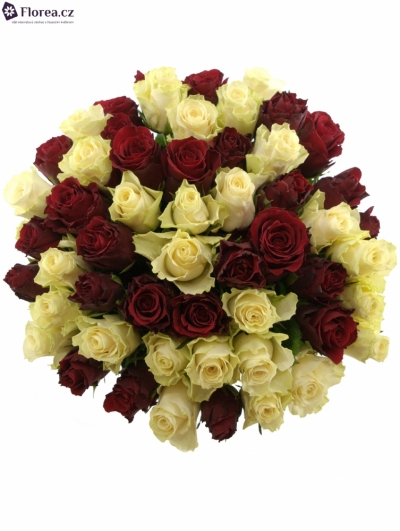 Kytice 55 míchaných růží AGAVE 60cm