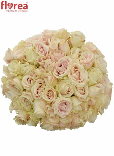 Kytice 55 bílých růží ADOR AVALANCHE+ 60cm