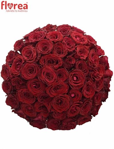 Kytice 55 červených růží ABBA