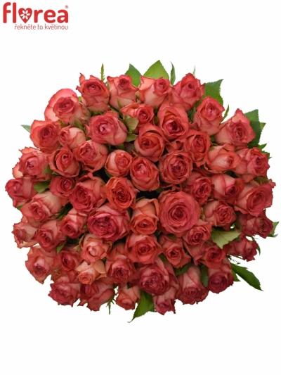 Kytice 55 červených růží BRENDT 50cm