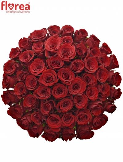 Kytice 55 červených růží MILLION REASONS