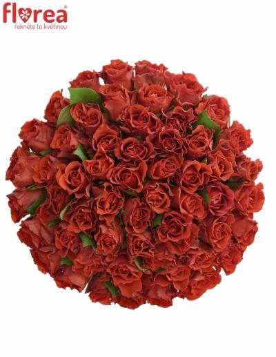 Kytice 55 červených růží RED CORVETTE S 40cm