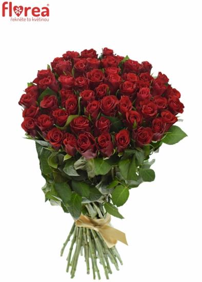 Kytice 55 červených růží RED RIBBON 50cm