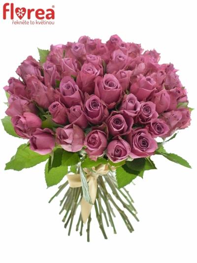 Kytice 55 fialových růží NEW ORLEANS 40cm