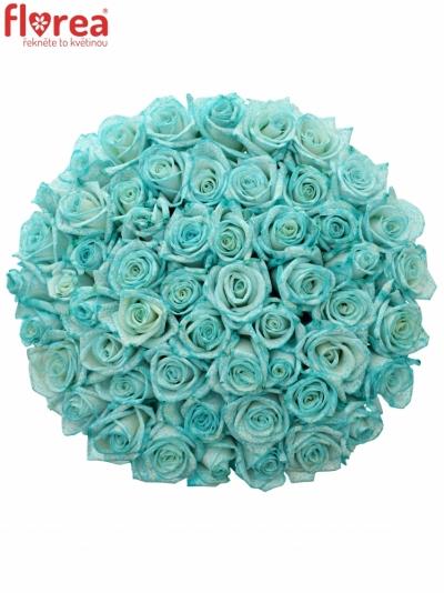 Kytice 55 ledově modrých růží ICE BLUE VENDELA 70cm