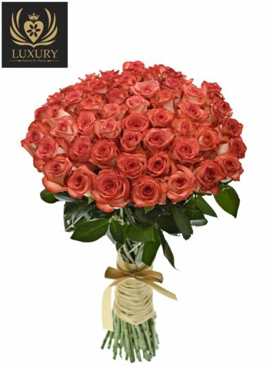 Kytice 55 luxusních růží BLUSH 70cm