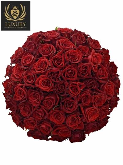 Kytice 55 luxusních růží TESTAROSSA 70cm