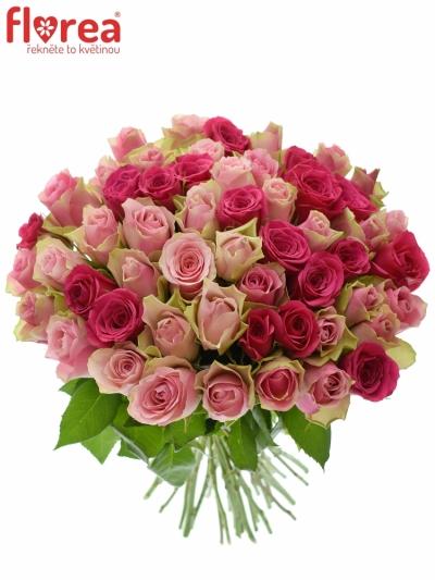 Kytice 55 míchaných růží ALHIVIA