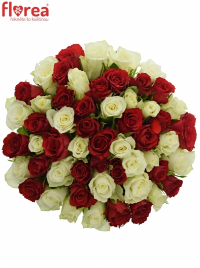 Kytice 55 míchaných růží AGATHA 40cm
