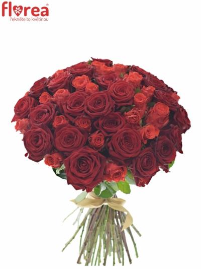 Kytice 55 míchaných růží BERENIKE 40cm