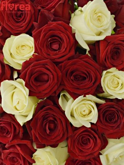 Kytice 55 míchaných růží CHRISTELLE 55cm