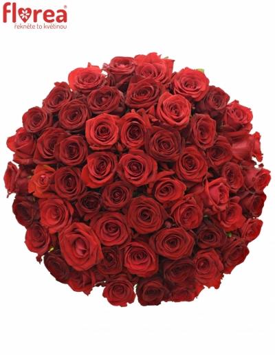 Kytice 55 míchaných růží JOANNA 90cm