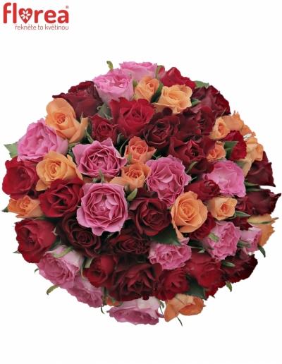 Kytice 55 míchaných růží KATRIEL 40cm