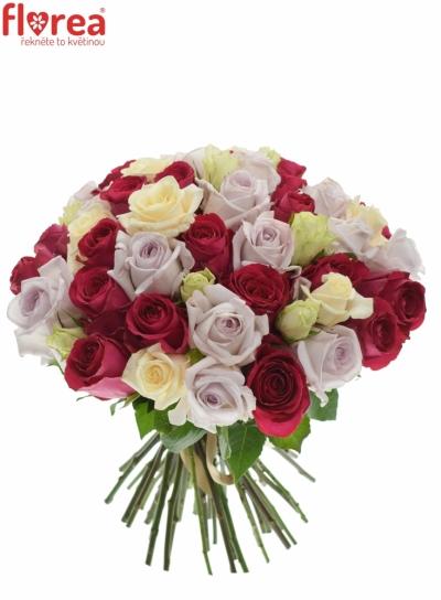Kytice 55 míchaných růží LORRIESS