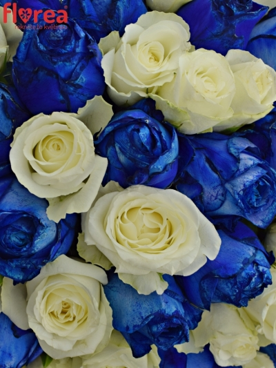 Kytice 55 míchaných růží MARELLA