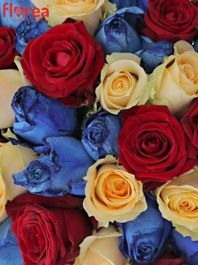 Kytice 55 míchaných růží MARRINETA 40cm