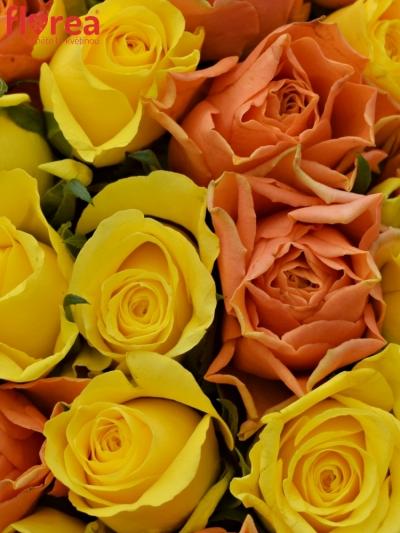 Kytice 55 míchaných růží MARYWALK 50cm