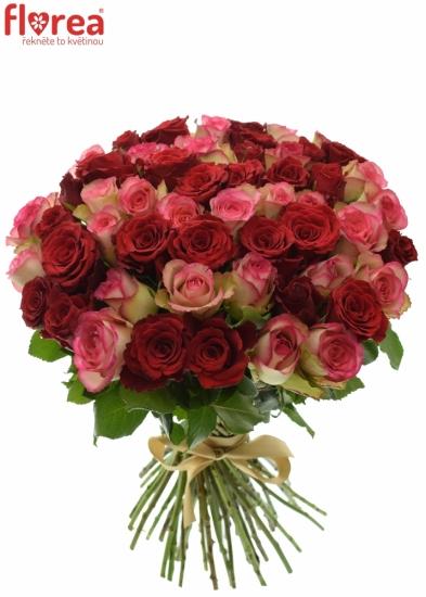Kytice 55 míchaných růží ODETTE 60cm