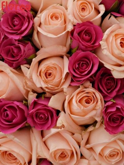 Kytice 55 míchaných růží PINACHE