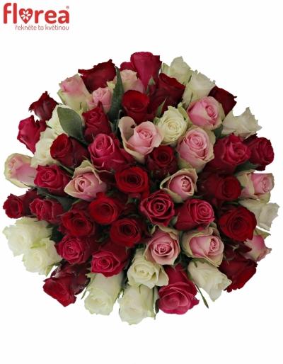 Kytice 55 míchaných růží RADWAN 50cm