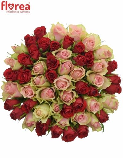 Kytice 55 míchaných růží ROSEBELLINE 60cm