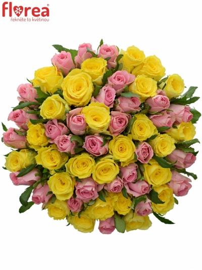 Kytice 55 míchaných růží SHANLEY 70cm