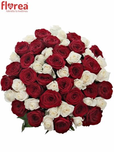 Kytice 55 míchaných růží TAMARA 90cm