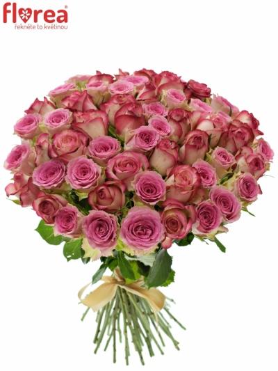 Kytice 55 míchaných růží TIMESTELLE