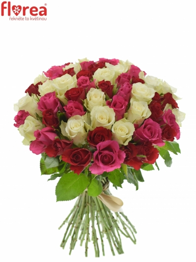Kytice 55 míchaných růží WHITE GRACIANA 35cm