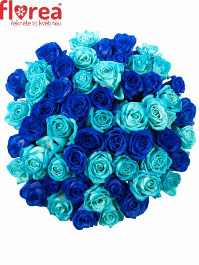 Kytice 55 modrých růží BLUE ADRIANA