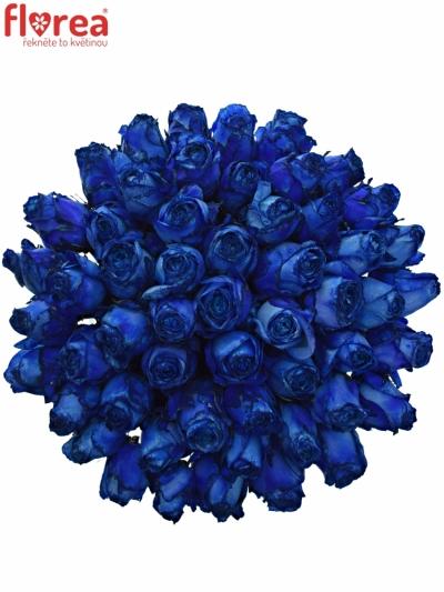 Kytice 55 modrých růží BLUE QUEEN OF AFRICA 50cm