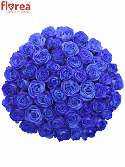 Kytice 55 modrých růží BLUE VENDELA 80cm