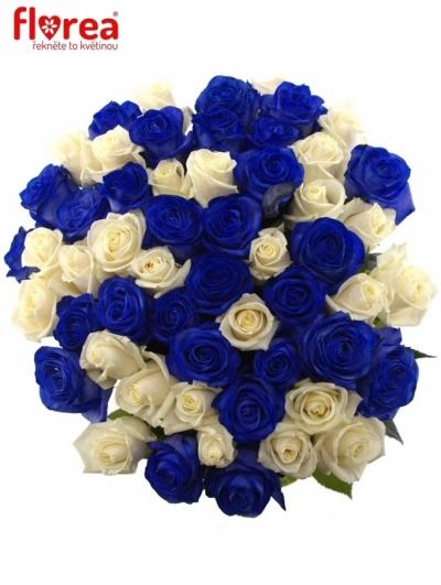 Kytice 55 modrých růží MARIANNA