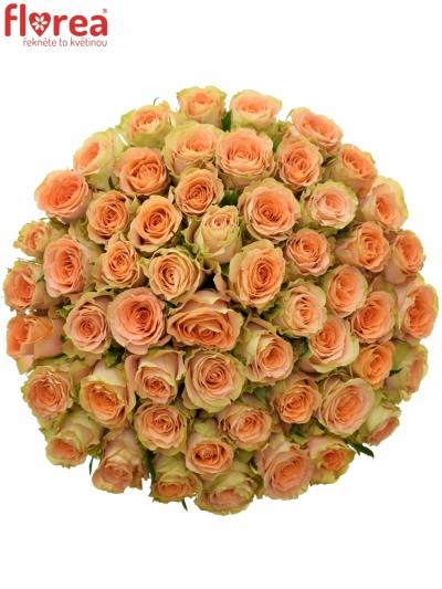 Kytice 55 oranžových růží FLORENTINE