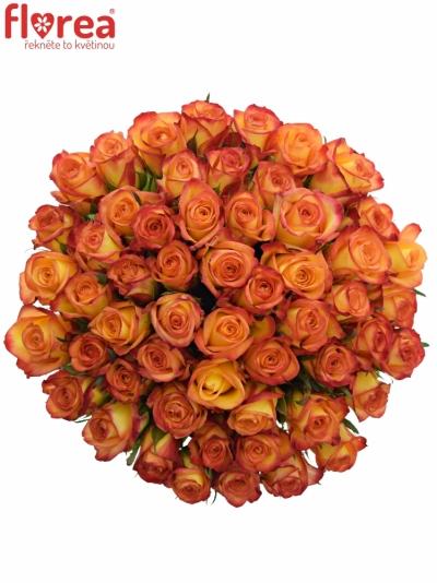 Kytice 55 oranžových růží OUTLAW! 50cm