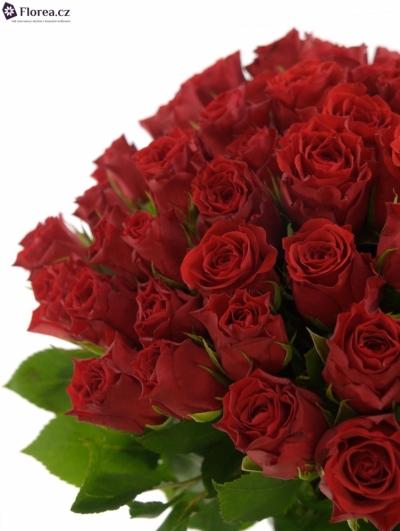 Kytice 55 růží HOT BLOOD