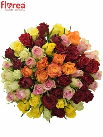 Kytice 55 růží MIX 40cm