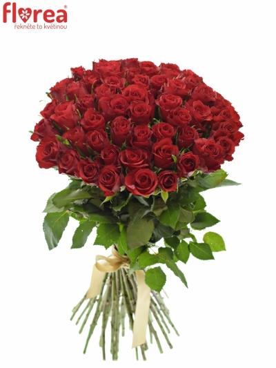 Kytice 55 růží RED CALYPSO