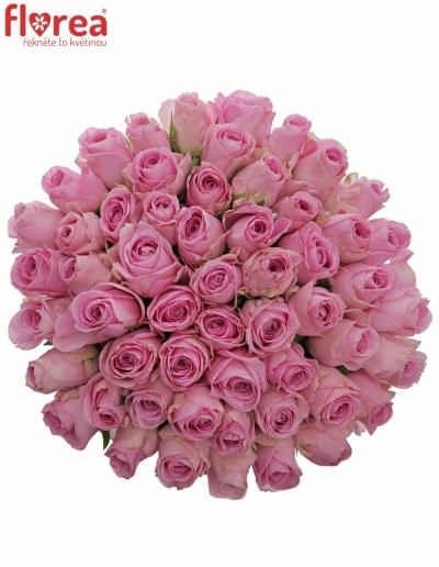Kytice 55 růžových růží HEIDI! 50cm