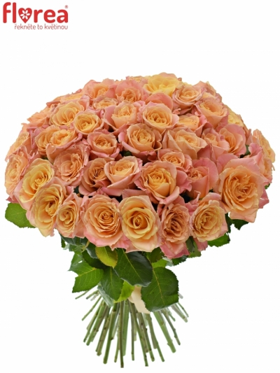Kytice 55 růžových růží MISS PIGGY