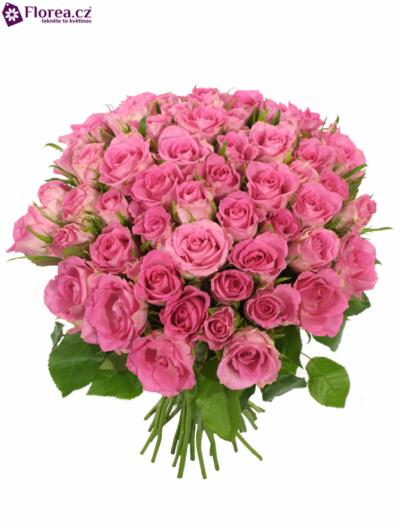 Kytice 55 růžových růží TISENTO 40cm