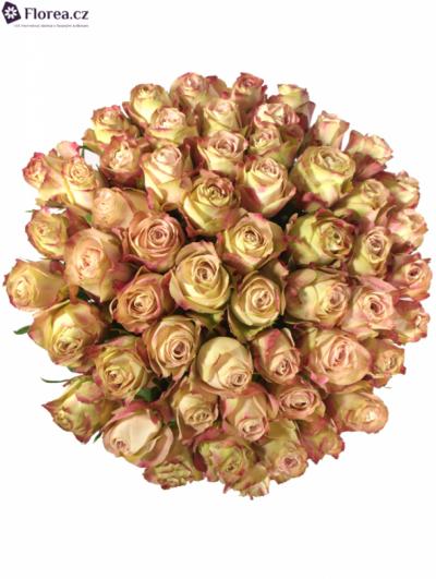 Kytice 55 růžových růží UPPER SECRET 60cm