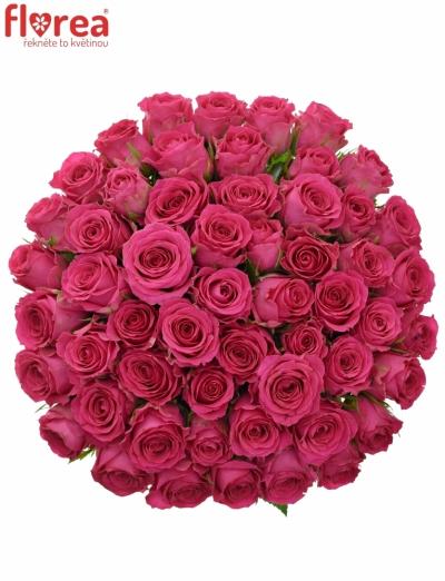 Kytice 55 růžových růží WINK 60 cm