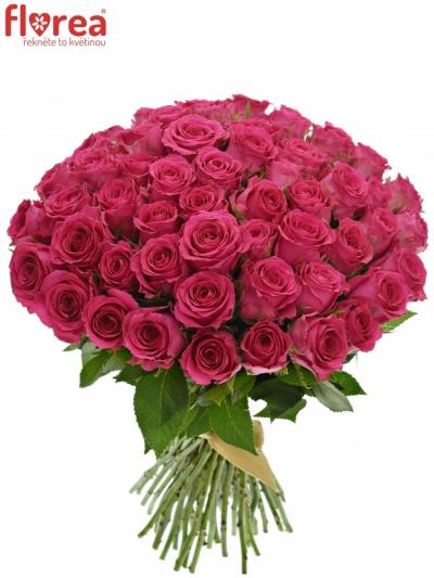 Kytice 55 růžových růží WINK 40 cm